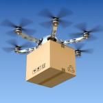 Der Traum vom Drohnen-Hähnchen