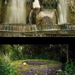 Die Symbolik des Brunnens und die emotionale Welt Schuberts